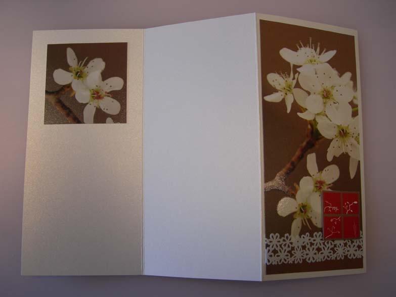 Tri-fold flowers Card