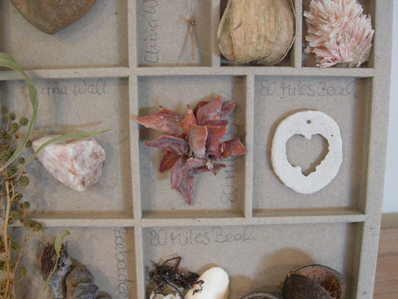 Kimberley Collage middle