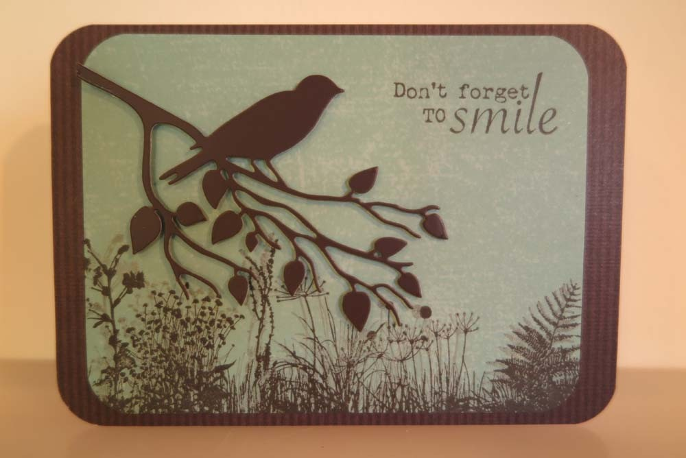 Don't forget to smile Card